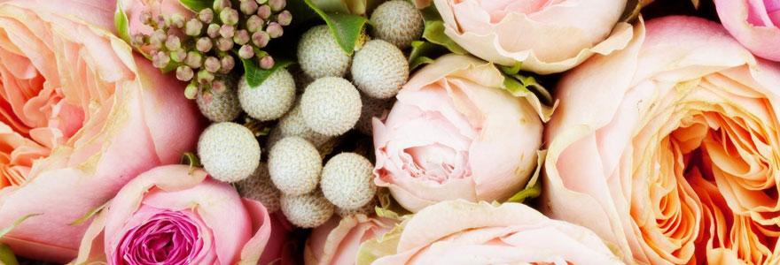 Fleurs dire « Merci »